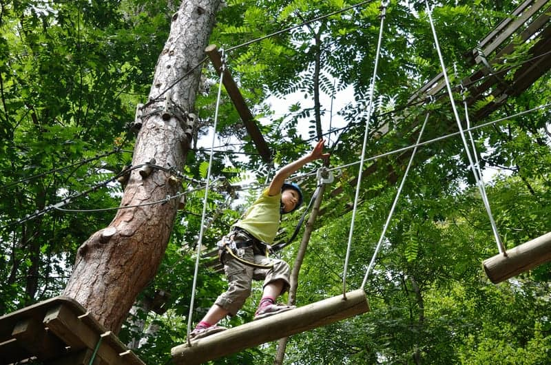 New Tree Tops Ropes Course Attraction Opens Next to the Oak Tree Lodge