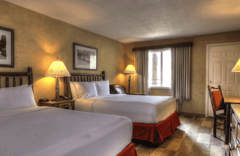 pet friendly room in sevierville hotel